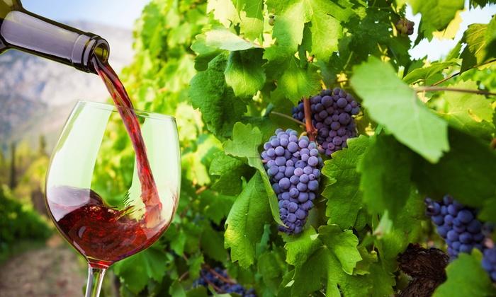Bernardo Winery - Rancho Bernardo: Wine Tasting for Two or Four at Bernardo Winery (Half Off)