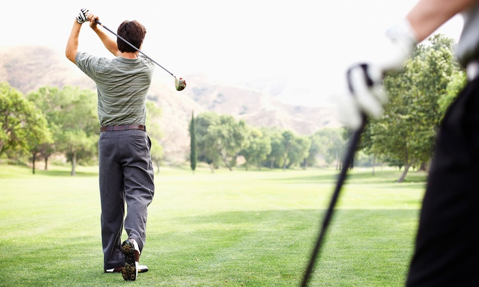Eagle Ridge Golf Club - Belleview: One or Two Private Golf Lessons and Driving-Range Practice Sessions at Eagle Ridge Golf Club (Up to 55% Off)