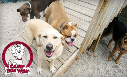 One, Three, or Five Drop-In Dog-Daycare Sessions at Camp Bow Wow Burnsville (Up to 54% Off)