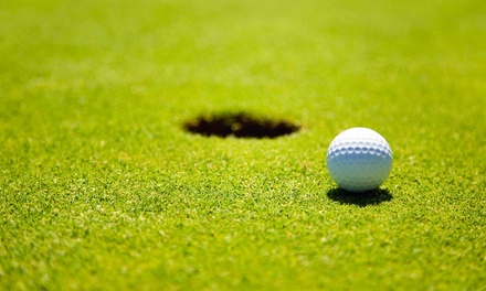 $20 for Round of Golf for One with Cart Rental at Bass Lake Golf Course (Up to $46 Value)