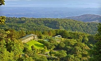 Boutique Hotel amid Costa Rican Cloud Forest