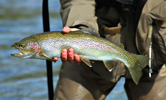 Jeff Goodwin's Guide Service - Redding: Rainbow-Trout Fishing Trip for Two or Four from Jeff Goodwin's Guide Service  (Up to 32% Off)