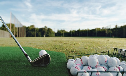 Mini-Golf Game for Two or Four with Medium Bucket of Driving-Range Balls at Big Swing Golf Center (41% Off)