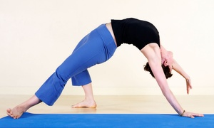 Umang's Wellness Haven: 10 Drop-In Yoga Classes at Umang's Wellness Haven (Up to 87% Off)