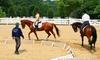 乗馬体験約90分(騎乗30分)/保険料等込
