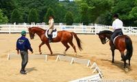 【最大64%OFF】屋根付き馬場完備。雨でも安心!≪はじめての乗馬体験(保険料・レンタル料込)≫※人数・利用時間で4クーポンから選べる ...