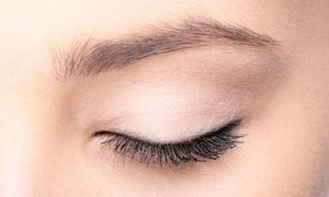 The Glamorous Life, Inc.: One, Three, or Five Sessions of Eyebrow and Eyelash Tinting at The Glamorous Life, Inc. (Up to 61% Off)