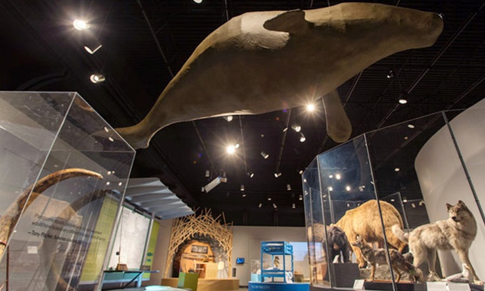 Museum of Vancouver - Vancouver: Admission for One, Two, or a Family at Museum of Vancouver (Up to 47% Off)