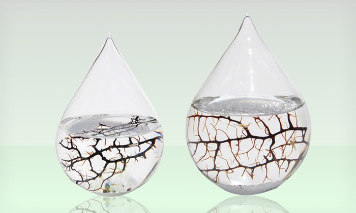Waterdrop EcoSpheres: Small or Large Waterdrop EcoSphere (37% Off). Free Shipping and Returns.