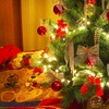 Up to 56% Off Christmas Light Services