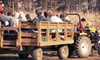 *OOB*Guffey Acres - Clay: General or V.I.P. Family Farm Day for Two or Four at Guffey Acres (Up to 53% Off)