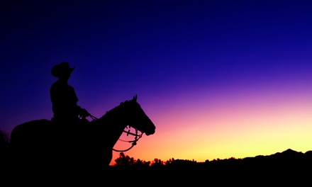 One- or Two-Hour Trail Rides at Rancho Bravo (40% Off)