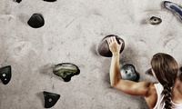 Indoor Climbing Taster Session for Up to Six at Creation Climbing Centre (Up to 54% Off)