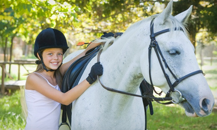Horse Savvy - Poway: Two Days or a Full Week of Horse-Riding Camp at Horse Savvy in Poway (54% Off)