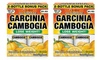 Garcinia Cambogia Supplements: Garcinia Cambogia Supplements