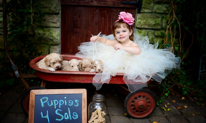 Little Rascals Photography - Mason: 30-Minute Holiday Portrait Session with Prints and Optional Disc at Little Rascals Photography (Up to 75% Off)
