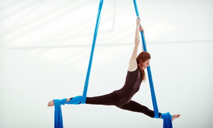 DL Fitness Studios - Columbus Park: Aerial Silks, Boot Camp, and Pole Fitness Classes at DL Fitness Studios (Up to 54% Off). Three Options Available.