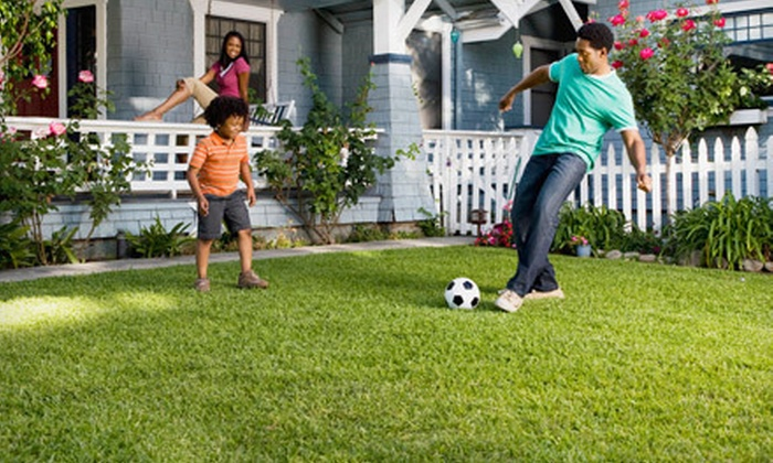 Lawn Runners - Birdland Neighbors: Two or Four Lawn-Care Treatments from Lawn Runners (Up to 55% Off)