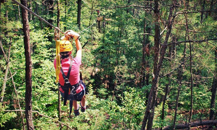Daredevil Ziplines - Cave Spring: 90-Minute Complete Zipline Tour for One or Dare Ya! Ride for Two at Daredevil Ziplines (Up to 54% Off)