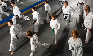 Family Tae Kwon Do Champions: 10 or 20 Classes with Uniform or Martial Arts Birthday Party at Family Tae Kwon Do Champions (Up to 95% Off)