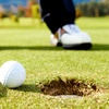 Up to 56% Off Lessons at Ed Harris School of Golf
