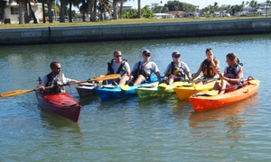 Black Water, Blue Water Tours: Kayaking Tour for Two or Four from Black Water, Blue Water Tours (Up to 46% Off)
