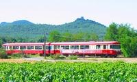 1 place adulte pour une balade en train à 12 ans avec lAssociation du Train Touristique du Centre Var