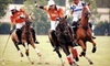 The Houston Polo Club - Houston Polo Club: Viewing of Polo Match for Two or Four at Houston Polo Club (Half Off)