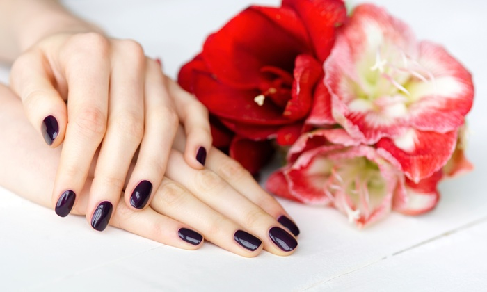 Perfix Beauty - Highlands: One or Two Basic or Shellac Mani-Pedis at Perfix Beauty (Up to 61% Off)