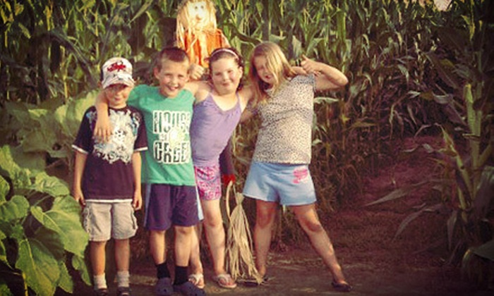 Rush Creek Wines - Aylmer: $15 for a Corn-Maze Package for Four with Pop and a Carving Pumpkin at Rush Creek Wines (Up to $30 Value)