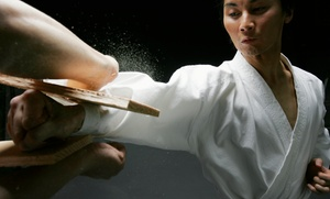 Fearless Taekwondo and Martial Arts: 8 or 16 Martial-Arts Classes at Fearless Taekwondo and Martial Arts (Up to 89% Off)