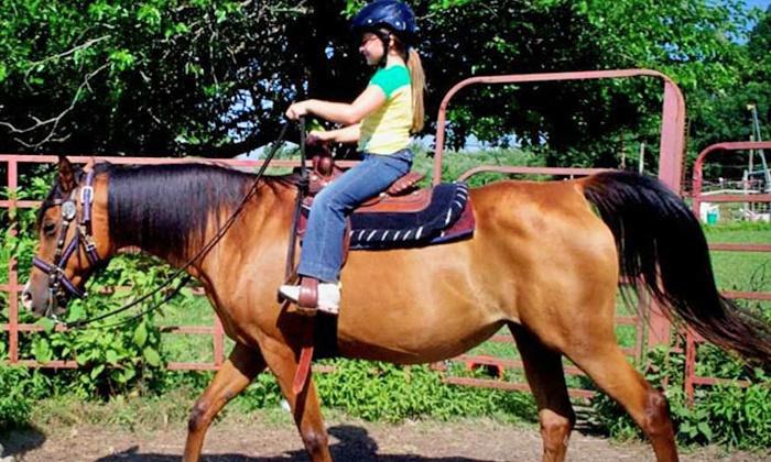 Labzara Ranch - Labzara Ranch: Two or Four Kids' Horseback Rides or Two Adult Horseback Rides at Labzara Ranch (Up to 50% Off)