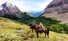 Holiday on Horseback – Up to 40% Off Trips