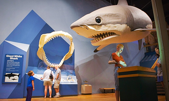 South Carolina State Museum - The Congaree Vista: Visit for Four or Six Including Special Exhibit Passes to the South Carolina State Museum (Up to 61% Off)
