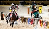 Medieval Times - Medieval Times: Knight Tournament and Feast for an Adult or Child with Optional VIP Package at Medieval Times in Dallas (Up to  44% Off)