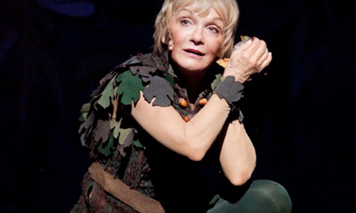 """Cathy Rigby is Peter Pan!"" - Shubert Theatre: ""Cathy Rigby is Peter Pan!"" at Citi Wang Theatre (Up to Half Off). 10 Options Available."