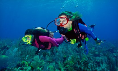 image for $117 for a PADI Open-Water <strong>Scuba</strong>-Certification from Tropical Adventures <strong>Scuba</strong> and Travel ($424 Value)