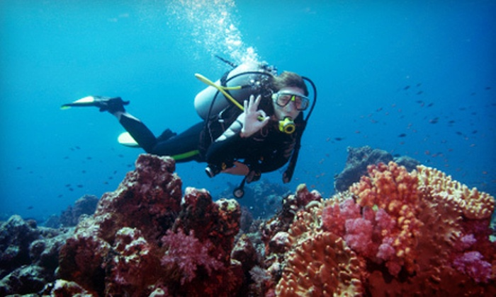 Dive Zone Scuba - Pearland: Basic or Advanced PADI Open-Water Scuba-Certification Course with Dives at Dive Zone Scuba (Up to 57% Off)