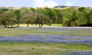 Fredericksburg - First Class Reservations: 2-Night Stay for Two with $20 Dining Credit from Fredericksburg - First Class Reservations in Fredericksburg, TX