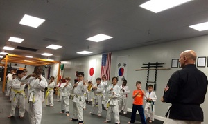 Golden Glove Lounge: $30 for $100 Worth of Martial-Arts Lessons — Golden Glove Lounge