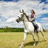 Up to 51% Off Horseback-Riding Trip in Pollock
