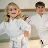 Up to 84% Off Martial Arts or Fitness Classes