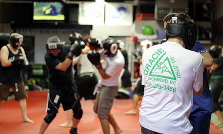 One Month of Unlimited Kids or Adults Martial Arts Classes at Premier Martial Arts (82% Off)