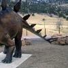 63% Off Family Membership to Dinosaur Ridge
