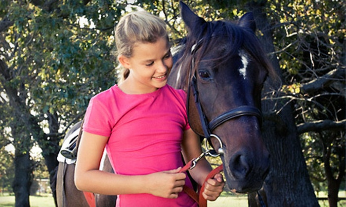 Louw Stables - Van Meter: One, Three, or Five Horseback-Riding Lessons at Louw Stables (Up to 54% Off)
