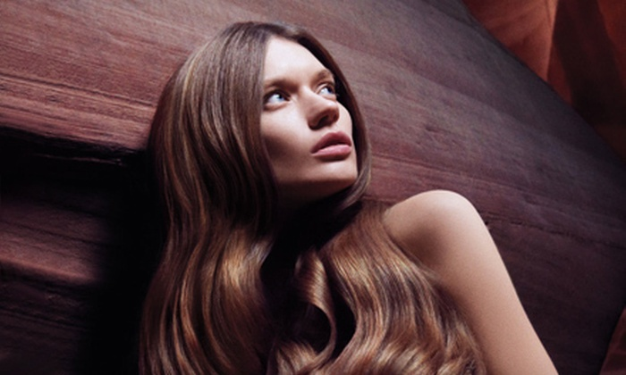 Leading Edge Aveda Salon - Downtown Santa Rosa: Haircut Packages at Leading Edge Aveda Salon (Up to 65% Off). Four Options Available.