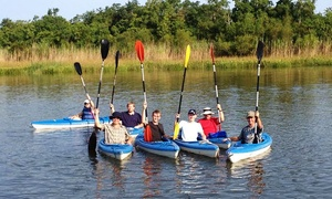 Delta Safaris: Two-Hour or Four-Hour Kayak Rental for Two from Delta Safaris (50% Off)