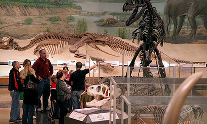 University of Michigan Museum of Natural History - U-M Central Campus: Individual, Couple, or Family Membership to the University of Michigan Museum of Natural History (Half Off)