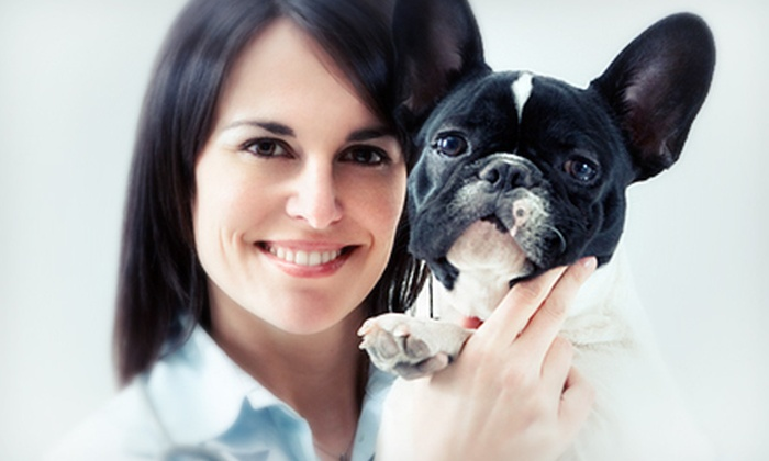Scarbrough Animal Clinic - Sunrise Golf Village East: Pet-Care Package with Exam and Grooming at Scarbrough Animal Clinic in Sunrise (Up to 67% Off). Four Options Available.