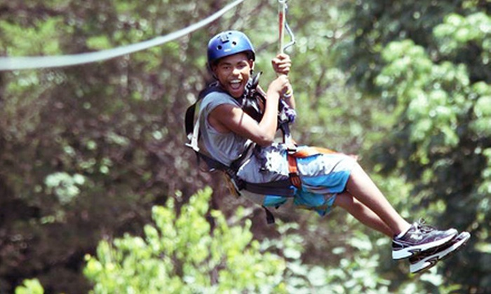 Wahoo Ziplines - 10: Skybridge and Zipline Adventure for One or Two from Wahoo Ziplines (52% Off)